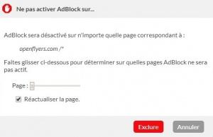 AdBlockChoixExclusion.jpg
